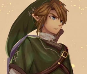 Link's display picture