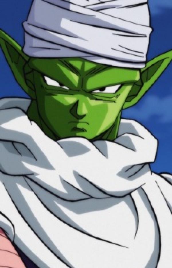 Piccolo's display picture